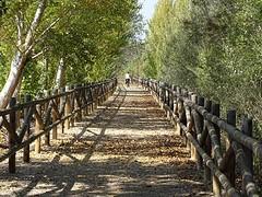 Fietspad langs Ebro