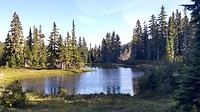 Paradise meadows op het Hidden Plateau bij Strathcona National Park