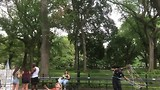 Slow mo central park