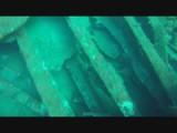 Diving Acores