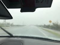 Stortregen