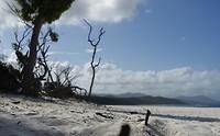 Strand Whitsundays