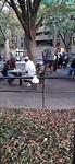 Schakende mannen in het park...