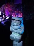 Astro Gnome