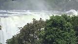 Brazilië. Uitzicht op de watervallen vanaf Brazilië