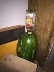 Watermeloen met tequila