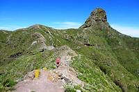 138 Roque Taborno de weg