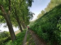 Leuk fietspad in de buurt van Lage Zwaluwe