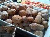 papas arrugadas: gerimpelde aardappeltjes