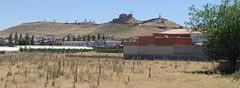 de molens van Don Quijotte, Consuegra
