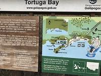 Plattegrond Tortuga Bay