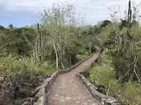 Het pad richting het strand (2,5km)