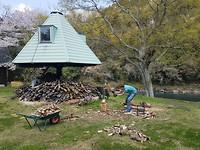 De houthakker aan het werk