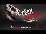 "Exposition ""Un T. rex à Paris"""