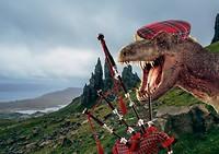 Trex Scotland