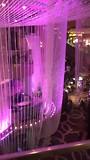 Dag 9 viva las Vegas 🎰🎲
