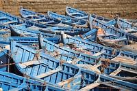 Essaouira 6 - Nov 09 vishaven