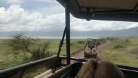 Een kijkje vanuit de jeep