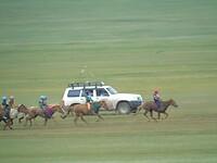 Nadaam race