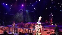 Het Lion King spektakel!