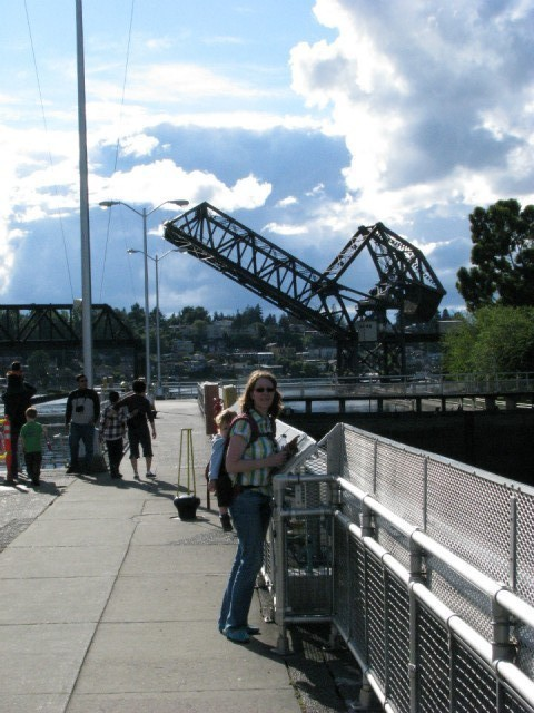 Ballard locks fish ladder foto vanessa vd s reisblog for Ballard locks fish ladder