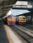 Thai treinen