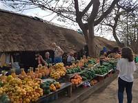 Markt St. Lucia