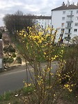 De lente begint!