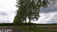 Riethoven - Westerhoven 11 km