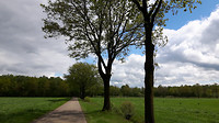 Riethoven - Westerhoven 11 km nr 4