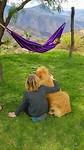 Onmiddellijk beste vrienden met de honden van het huis