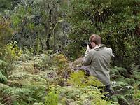 In de bosjes vogeltjes schieten
