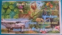 visitekaartje Alexis Torres Tours
