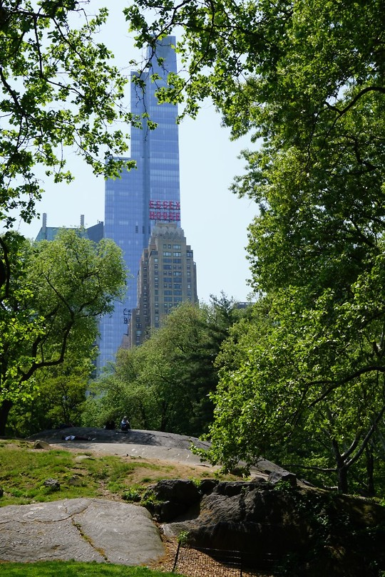 Central Park #5