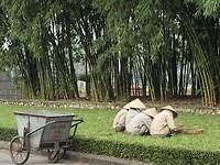 In de tuin van Ho Chi