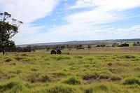 Landschap bij Marlo