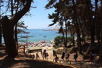 Playa El Canelo