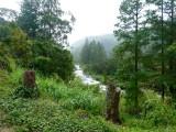 Rio Boquete