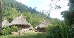 dorp van de Kogi