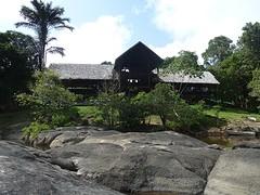 Hangmat huis fungus island