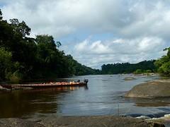 Uitzicht Fungu Island over de Coppename rivier