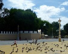 Jongetjes speelt voor het royal palace