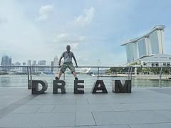 W's dream