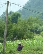 Vrouw in rijstveld, even pauze