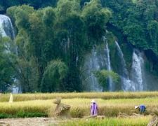 Ban Gioc met voorgrond rijstplukkers