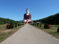 Biggest sitting buddha
