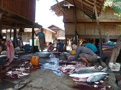 vismarkt @ maungmagan vissersdorp