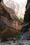 Springdale - Narrow trial door het water - Zion National Park