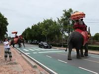 het verkeer in Ayutthaya