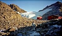 Dag 8 - Austrian hut met op de achtergrond Lewis Glacier